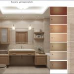 Цветовое решение ванной комнаты, дизайн интерьеров, вынных