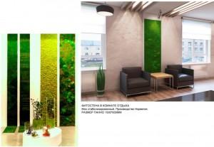 дизайн-проект офиса, фитостена в офисе, дизайн-старый осокл